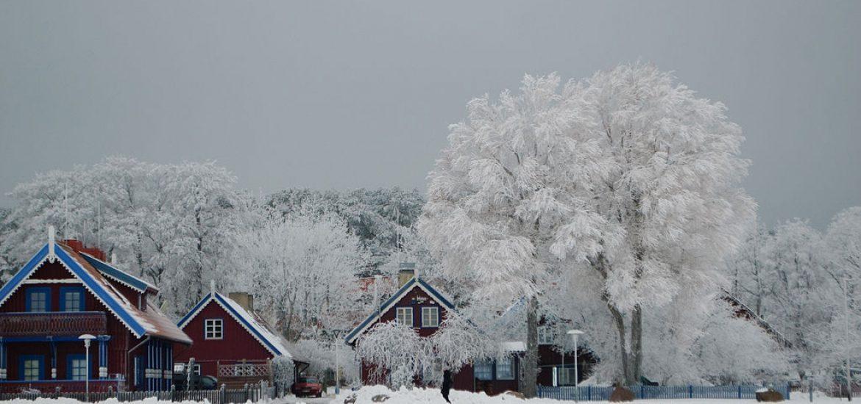 Lithuania questions daylight saving