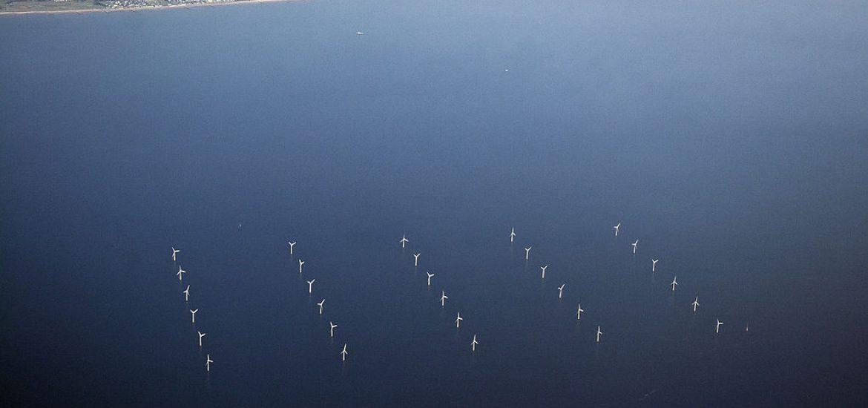 EU wind-power investment slumps: NGO