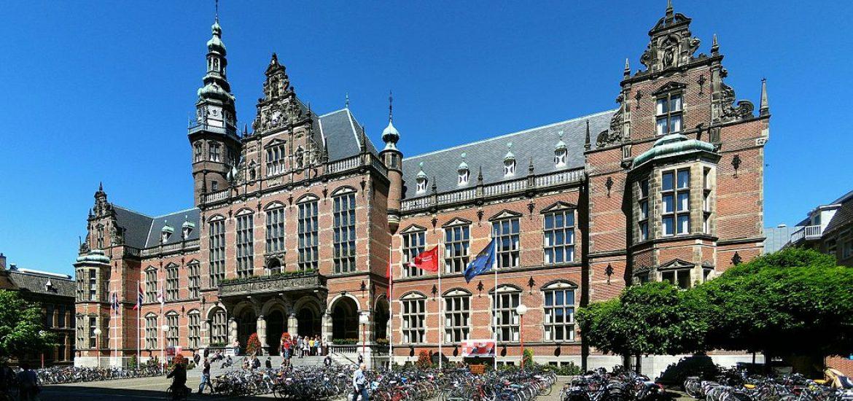 Groningen output must halve: report