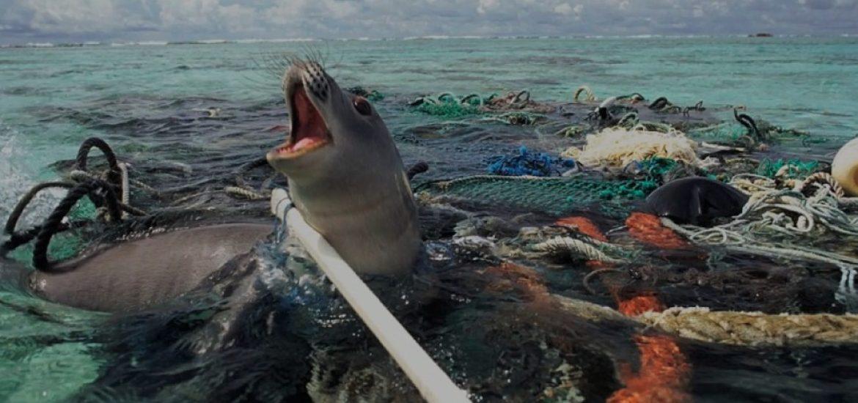 EU proposes plastic ban