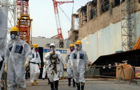 German nuclear sector broadens markets