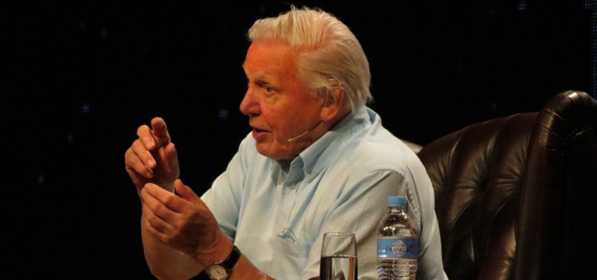 Attenborough tells COP 24 to act