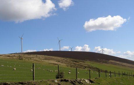 Ireland derailing renewable policy: activists