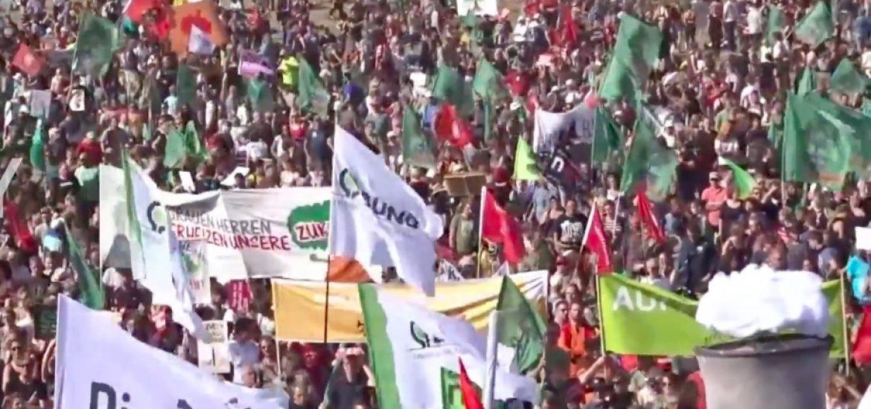 Activists celebrate Hambach reprieve