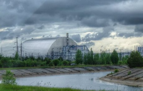 Chernobyl has Become a Refuge for Wildlife 33 Years after the Nuclear Accident