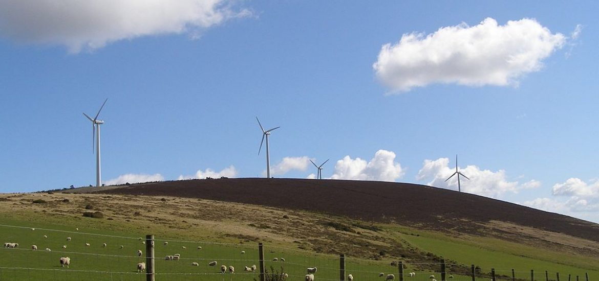 Ireland launches wind power campaign