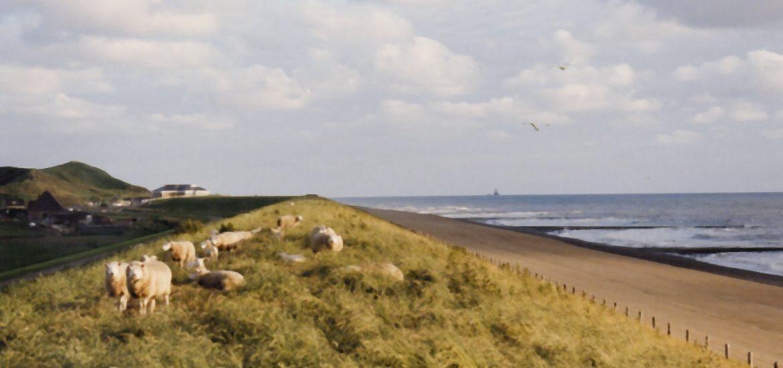 EU praises Nordic renewable progress