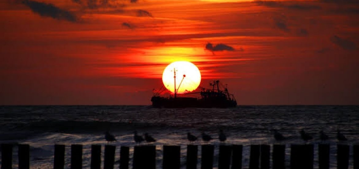 North Sea drilling comes up dry