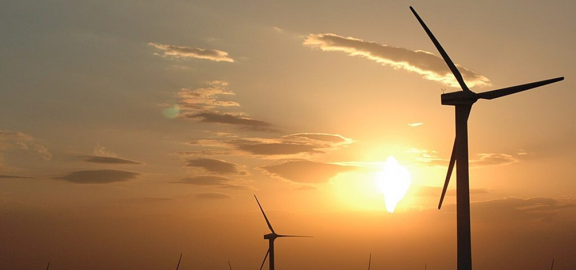 Steel tariffs to hammer wind power: NGO