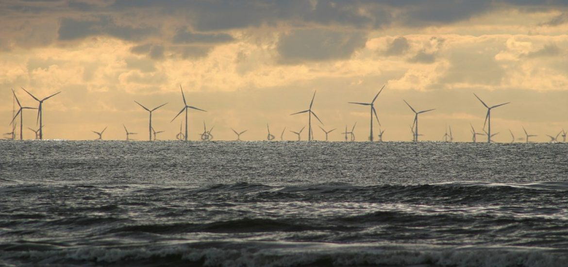 Dutch disappoint with renewable record